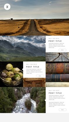 Wander Wordpress Theme on Web Design Served