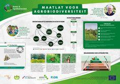 Wetenschappelijke Poster met Infographics (graphic design for scientific poster). From: http://www.rotterdam-vormgeving.nl/diverse-wetenschappelijke-posters--infographics.html.