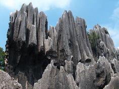The Stone Forest in Yunan Province, Kunming, China. Been here before--can't wait to go back!