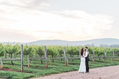 """Find your """"something blue"""" in the gorgeous Blue Ridge Mountains. Vineyard wedding venues in Central Virginia not only offer great wines, but also spectacular backdrops with rolling vines set against the Mountains. Photo by at Vineyard Wedding Venues, Shenandoah Valley, Blue Ridge Mountains, Got Married, Countryside, Vines, Virginia, Backdrops, Romantic"""