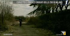il popolo del blog,notizie,attualità,opinioni : Corvetto e i ragazzi drogati dello zoo di Milano