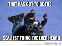 The  sealiest... I couldn't not repin this