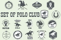 polo club by Tomass2015 on Creative Market