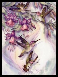 040-GC Jody Bergsma HUMMINGBIR​D BIRD Unused Greeting Card | eBay