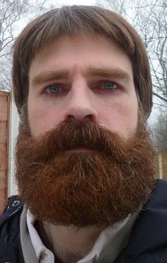 """""""men-upclose: """" Men-UpClose closeups of thick beards """" This oldie has resurfaced. Walrus Mustache, Beard No Mustache, Big Moustache, Thick Beard, Sexy Beard, Big Beard, Great Beards, Awesome Beards, Hairy Men"""