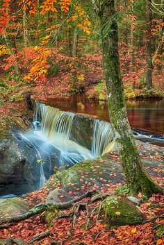 Enders Falls State Park, Granby, Connecticut