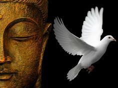 Toda grande caminhada começa com um simples passo. Buda  Every great journey starts with a single step. Buddha
