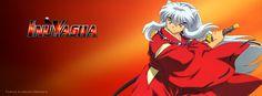 InuYasha: Durante el período Sengoku, un medio demonio (hanyō) llamado InuYasha roba la Perla de Shikon con el objetivo de convertirse en un demonio completo (yōukai). Sin embargo, su plan es frustrado por una sacerdotisa llamada Kikyō quien, utilizando sus últimas fuerzas, le dispara una flecha, clavándolo en el árbol sagrado (Goshinboku); dejándolo paralizado y dormido durante 50 años. Posteriormente la sacerdotisa, antes de morir, pidió que su cuerpo fuera quemado junto con la joya.
