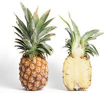 Red Letter food for April: PINEAPPLE med. pineapple yields 3 cups of cut fruit). Pineapple is ripe if top center leaves pull out easily, distinct crevices surround each section, and fruit is pliable to touch. Quality fruit is heavy for size. Pineapple Detox, Eating Pineapple, Pineapple Jam, Frozen Pineapple, Canned Pineapple, Fruit Quiz, Eat Fruit, Aloe Vera Juice Recipes, Pineapple Health Benefits