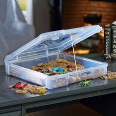 Bug Sensory Sand Station -  Encourage a child's natural exploration with a creepy crawler filled sensory station.