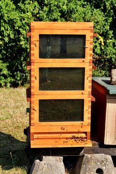 Bee Hive Plans, Raising Bees, The Inventors, Beehive, Queen Bees, Bee Keeping, Roman, Healthy, Unique
