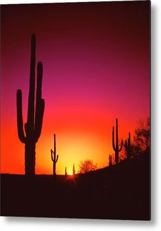 The purple and gold flames of sunset radiate out and cover the Arizona desert near Phoenix. Photo by Frank Houck. Desert Sunset by Frank Houck Desert Sunset, Summer Sunset, Purple Sunset, Desert Life, Sunset Photography, Landscape Photography, Photography Tips, Portrait Photography, Wedding Photography