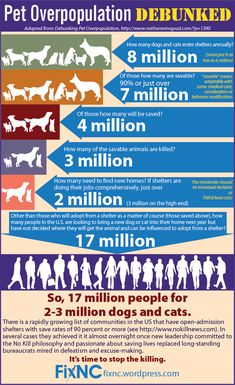 """Debunking Pet Overpopulation--Nathan Winograd Excuses — There Aren't Enough Homes--No Kill Tallahassee """"Pet Overpopulation"""": Meme, Zeitgeist and Myth (Updated)--Animal Ark"""