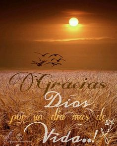 Gracias Dios.. Spanish Inspirational Quotes, Spanish Quotes, I Love Mondays, Sweet Lord, Night Wishes, Daily Inspiration Quotes, Jesus Loves Me, Dinners For Kids, Religious Quotes