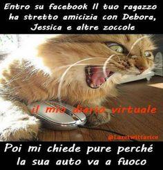 Jenny Musto - Google+