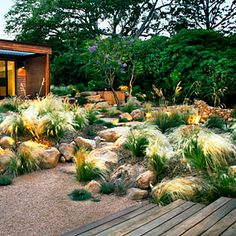 I like the combination of low-water grasses, interesting lighting, wood, and stone.