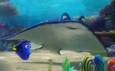 'Finding Dory': New Trailer Has More Questions Than... #FindingDory: 'Finding Dory': New Trailer Has More Questions Than… #FindingDory