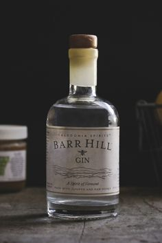 """nonconcept:  """"Caledonia Spirit Barr Hill Gin"""" by Carey Nershi."""