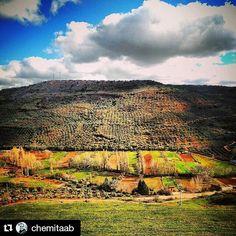 """#Repost @chemitaab with @repostapp    """"Desde Alcaraz"""" #albacete #alcaraz #sierradealcaraz #albacetemágico #tualbacete #igersalbacete #igersclm #igersspain #paisaje #primavera #instagood #instagram #landscape #spring #springcolors #spain #picoftheday by tualbacete"""