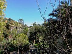 sapergo:  Bordighera (IM) - Parco di Villa Hortensia