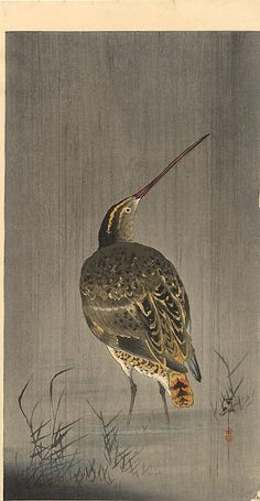 Ohara Koson (Japan, 1877-1945) | Snipe in Rain | Shin-Hanga style | Woodblock print on paper