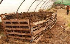 Pascal Poot, Plantation, Cannabis, Wood, Melons, Gardening, Camping Car, Couches, Tomatoes
