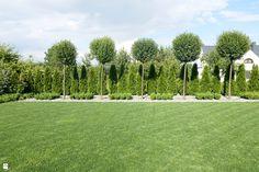 Back Garden Design, Backyard Garden Design, Landscaping A Slope, Modern Landscaping, Modern Landscape Design, Modern Garden Design, Privacy Trees Fast Growing, Privacy Plants, Topiary Garden