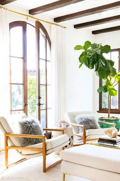 Big indoor plants full size of big indoor plants for living room how to decorate with large in every big house plants safe for dogs Big House Plants, Indoor Plants Low Light, Plants Indoor, Living Room Plants, Living Spaces, Living Rooms, California Style, California Fashion, Big Houses