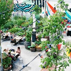 Frau Gerold's Garten ist das perfekte Restaurant für laune Sommerabende | creme zürich Pop Up Bar, Cool Cafe, Exterior, Cafe Bar, Coffee Shop, Home And Garden, Table Decorations, Landscape, A3