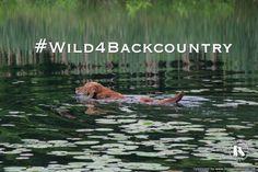 Our Merrick #Wild4Backcountry Adventure