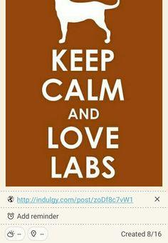 Keep Calm and Love Labs