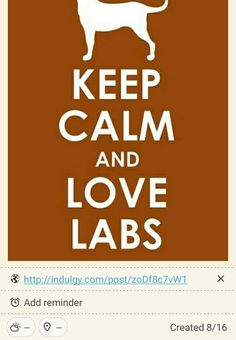 Keep Calm and Love Labs