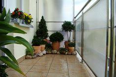 mini balcony garden :)