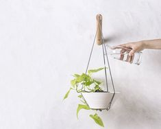 Hey, I found this really awesome Etsy listing at https://www.etsy.com/listing/232394311/hanging-planter-wall-plant-holder-grey