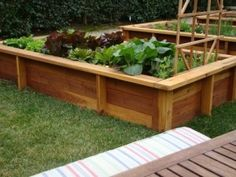 Love these raised beds... Trellis and seating on sides?