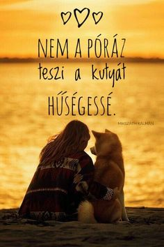 Dog Quotes Love, Facebook, Dogs, Movies, Movie Posters, Animal Pictures, Films, Pet Dogs, Film Poster