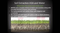 A presentation by Rick Haney of the USDA Agricultural Research Service at the National Conference on Cover Crops and Soil Health. This session covered basic .