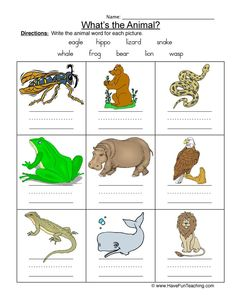 Using this Animal Names Worksheet, students label colorful pictures of nine animals using the word bank. Animal Worksheets, Science Worksheets, Animal Activities, Baby Animal Names, Baby Animals Pictures, Baby Names, Back To School Images, Different Types Of Animals, Different Fruits And Vegetables