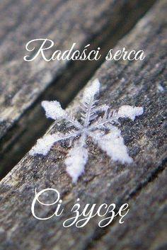 Weekend Humor, Winter Scenes, Winter Scenery