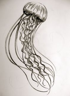 jellyfish tattoo design, i think it'd look better with a little color