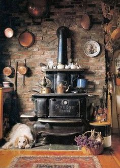 old stove in a rustic kitchen and a cute dog too