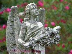 Angel in Bloom New Orleans Cemetery Photography