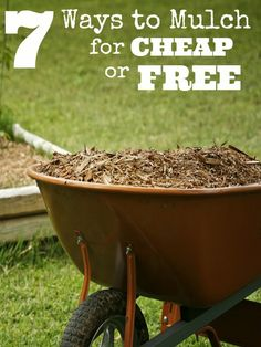 Do you need to apply a layer or two of mulch to your garden or landscaping? Take a look at these ways to mulch for cheap or free!