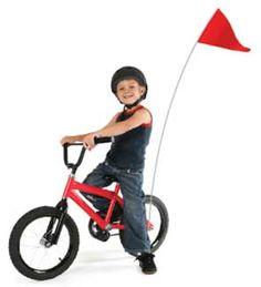 I had one of these orange flags on my stingray bike!!