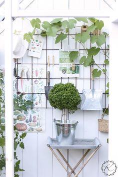 KUKKALA #kasvihuone #greenhouse