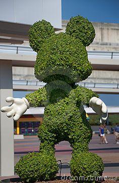 Disney's Magic Kingdom Mickey Mouse Topiary