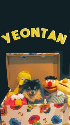 Yeontan uwu dogs love animals pets Vlive Bts, Bts Taehyung, Bts Bangtan Boy, Bts Dogs, Sunset Color Palette, Sad Art, Bts Group, Cute Baby Animals, Animals Dog