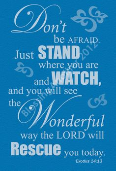 Exodus 14:13 Just stand where you are and watch. ( HE will Never leave you nor forsake you.)