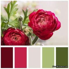 Farbschemata, Farbkonzept, Farben Kombinieren, Regenbogen Farben,  Farbenlehre, Wohnzimmer Farbe, Rot Farbe, Farbenspiel, Wandfarbe Farbtöne,  ...