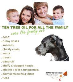 Amazon.com: Tea Tree Oil Pure Australian 15ml Nature's Finds: Health & Personal Care